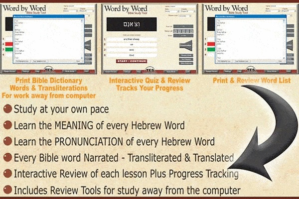 Word by Word bible study