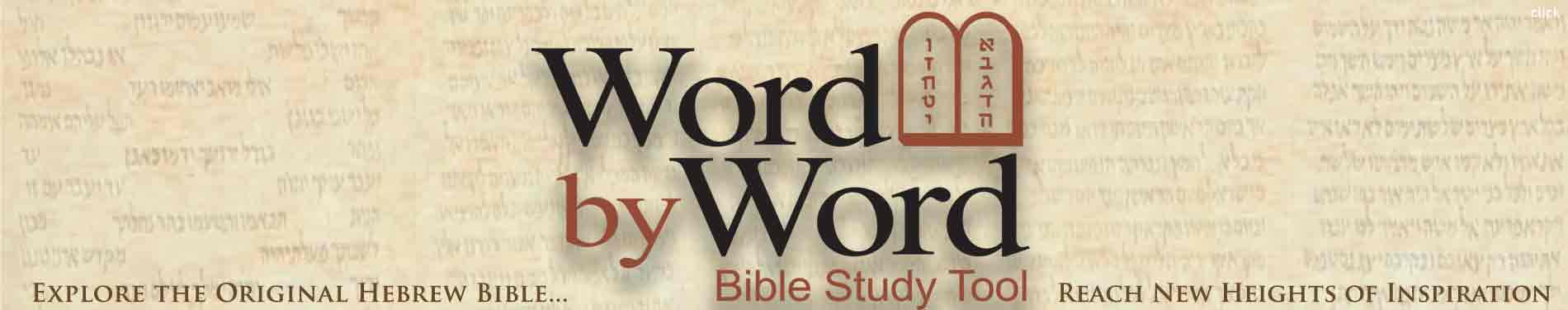 bible banner